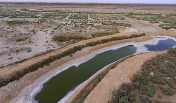 Water crisis salts the earth in Iraq's long-neglected south