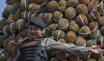 Passengers create stink over pungent Indonesian planeload of durian