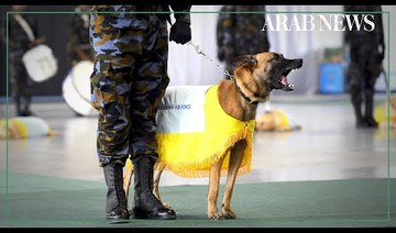 Sri Lankan Air Force 'Air Dog' unit graduates