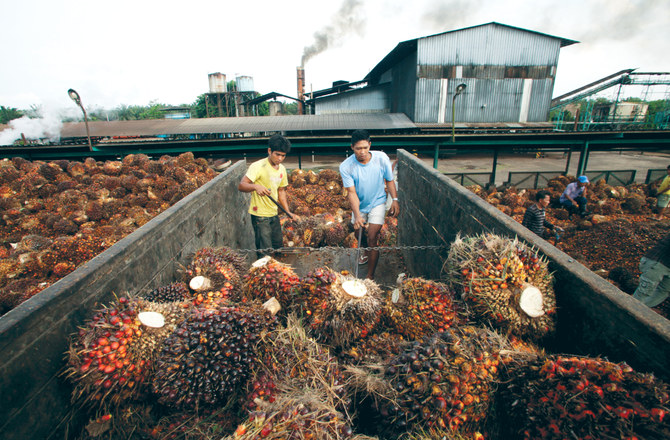 Indonesia, Malaysia hold talks to counter palm oil bias