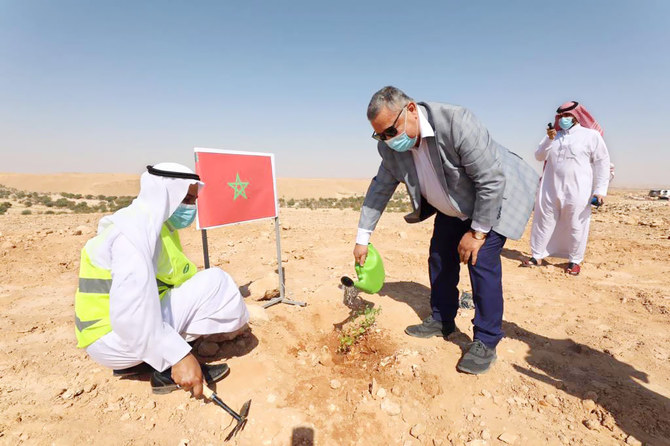 The campaign focused on planting native tree species which have adapted to Saudi Arabia's environment and require limited irrigation. (Supplied)